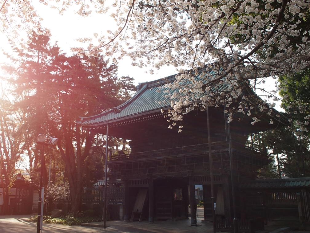 日円山妙法寺(杉並)