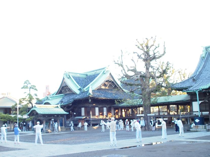 柴又帝釈天(題経寺)の朝
